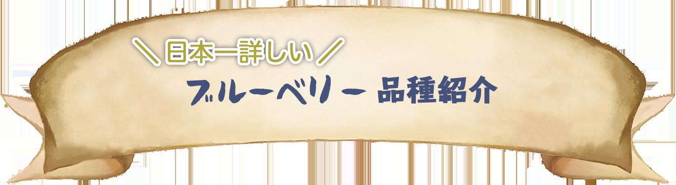 日本一詳しいブルーベリー品種紹介