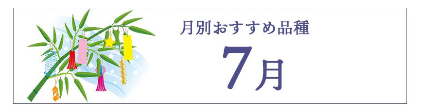 7月のおすすめ品種